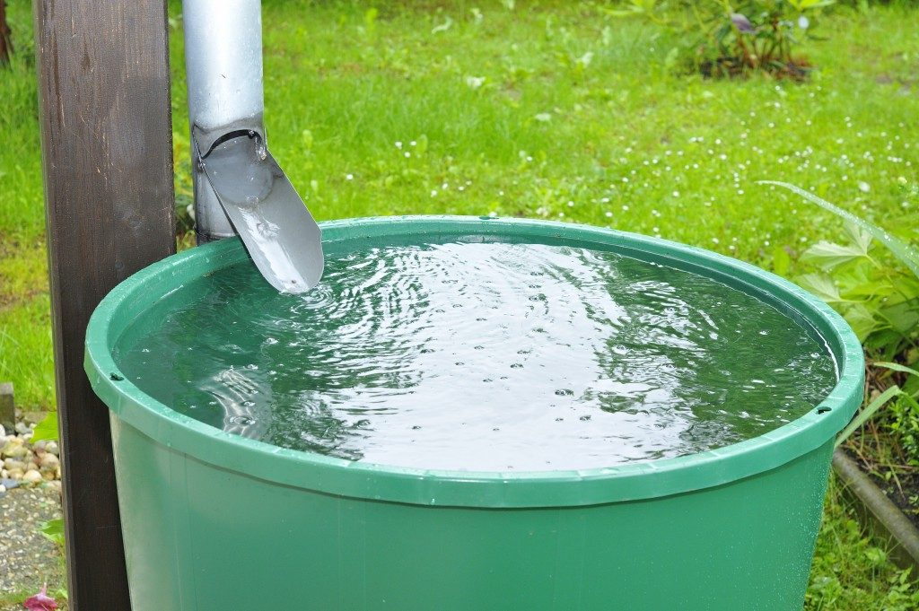 Green recovery of rainwater in a garden